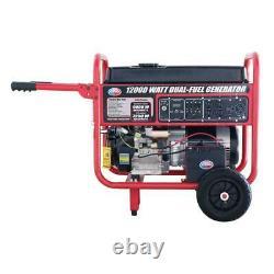 Tous Puissance 12000-w Portable Hybride Double Gaz Combustible Fonctionnant Générateur Démarreur Électrique