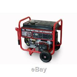 Toutes Puissance 10000-w Portable Double Gaz Combustible Fonctionnant Avec Démarrage Électrique Générateur